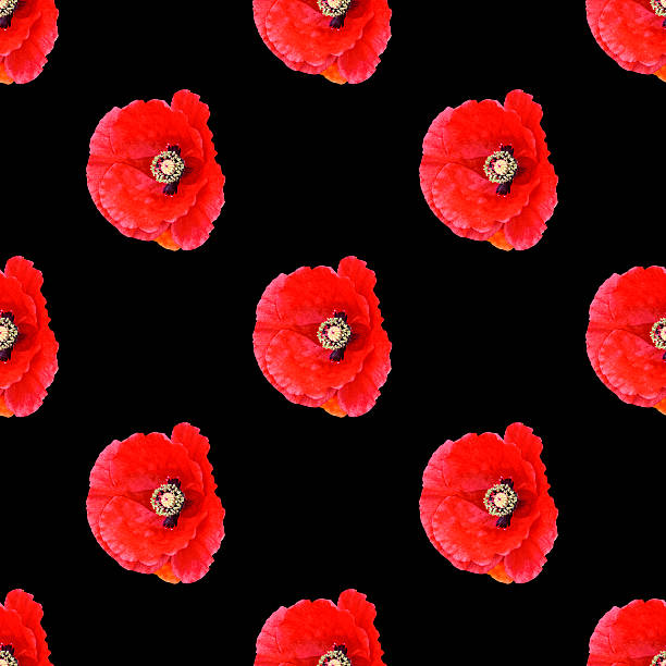 Seamless pattern red poppies stock photo
