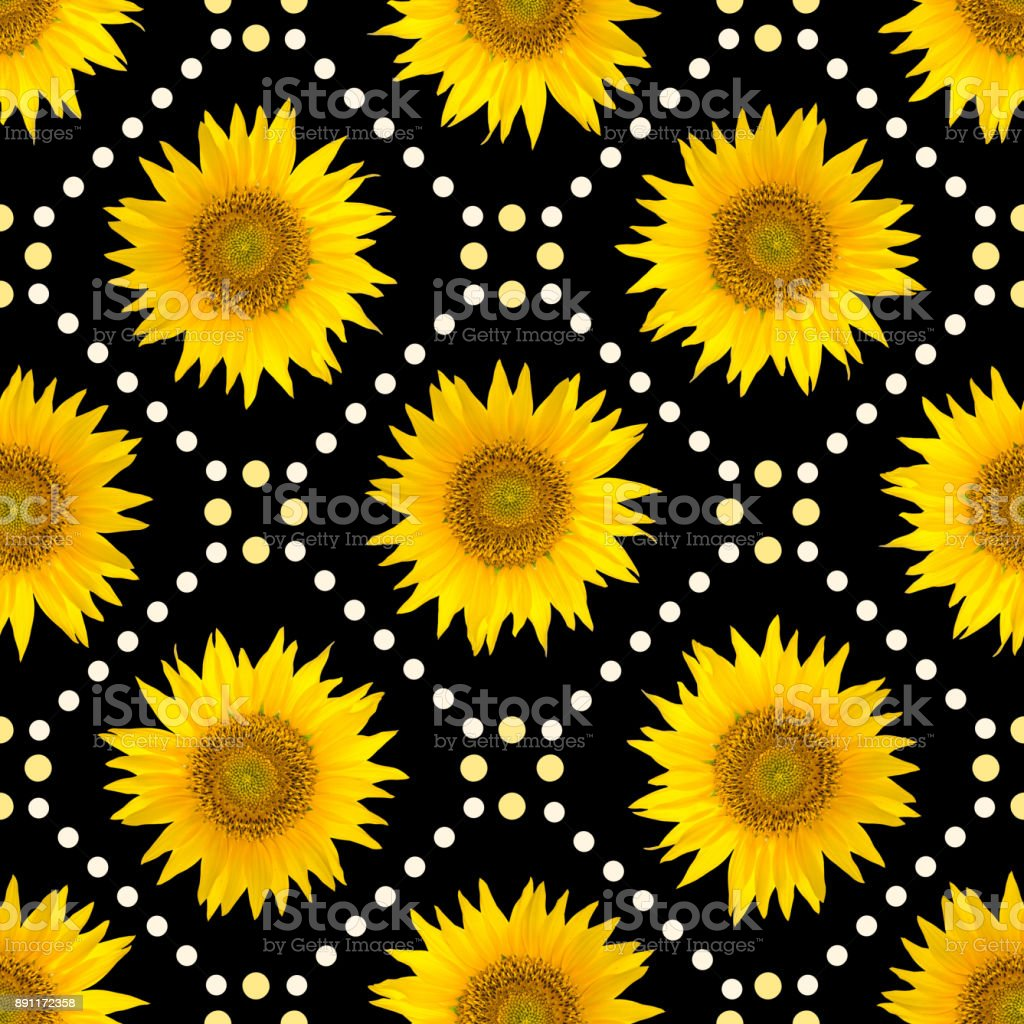 Seamless pattern with big bright sunflowers and brown dots on black background. stock photo