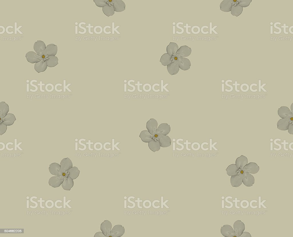 Seamless pattern with floral background stock photo