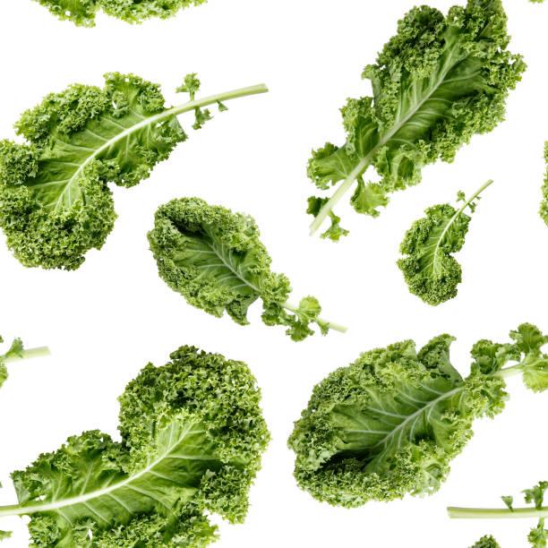 bezszwowy wzór z zielonym liściem jarmużu wyizolowanym na białym. tło warzywne. tekstura żywności. zdjęcie z bliska. - kapustowate zdjęcia i obrazy z banku zdjęć