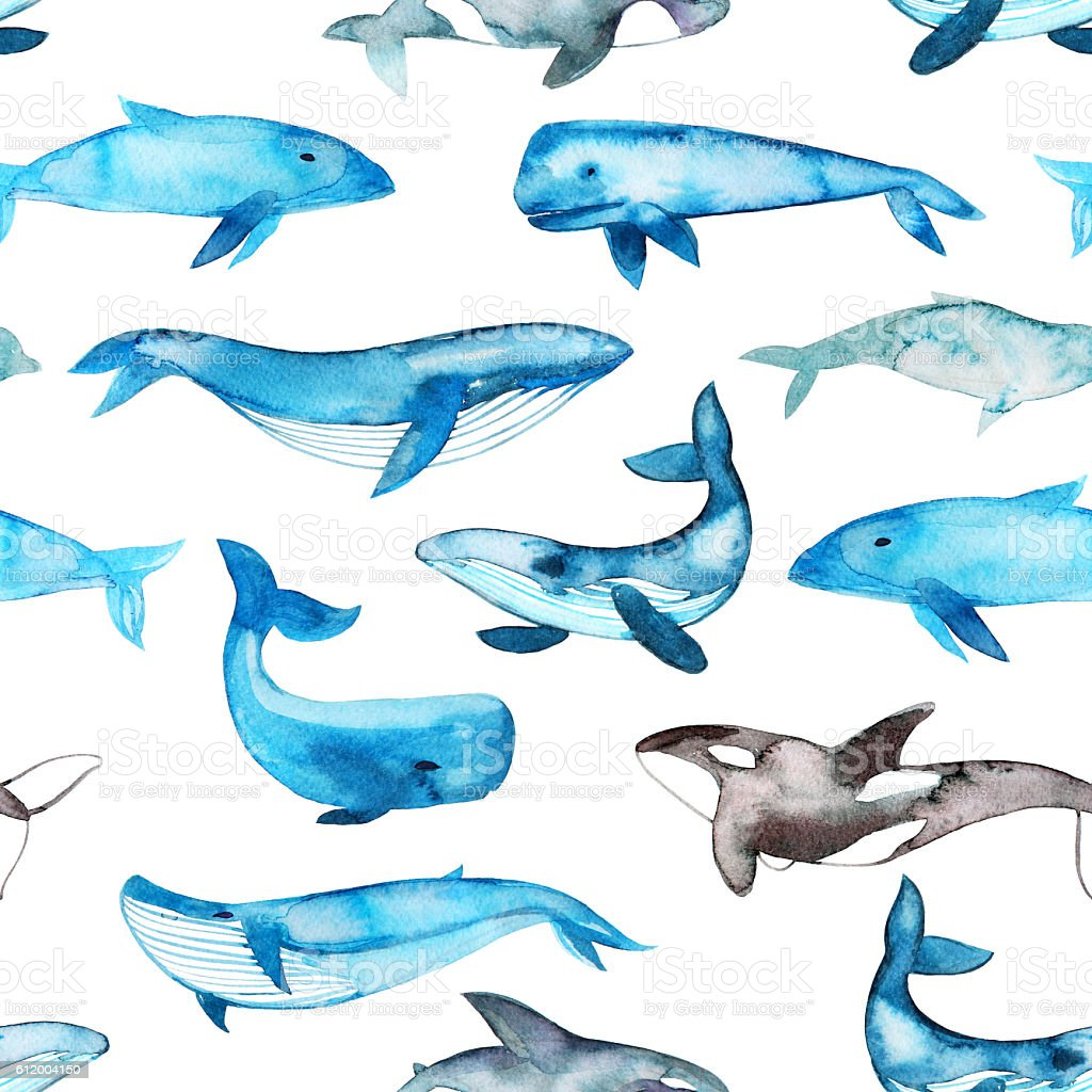 Seamless pattern with hand drawn whales. stock photo