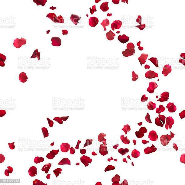 Seamless red rose petals breeze picture id531127783?b=1&k=6&m=531127783&s=612x612&h=ev 2jlnulgzbxcm9urvxrijygflyxddy0xbecjaxv7w=