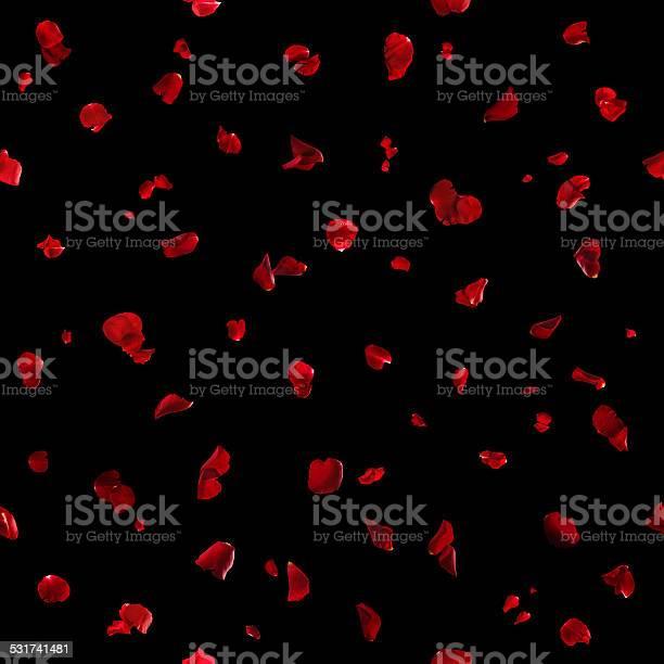 Seamless red rose petals on black picture id531741481?b=1&k=6&m=531741481&s=612x612&h=8rm8lb67kw9rhsvrheh1bzsduu8ut3ownqycrm6dn7e=