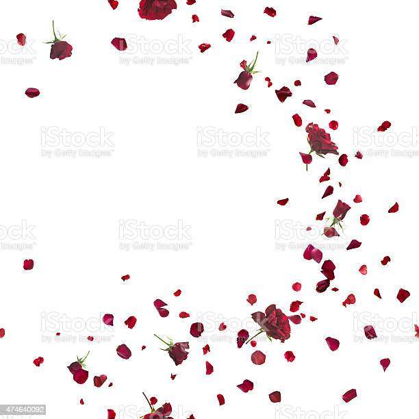 Seamless red roses breeze on white picture id474640092?b=1&k=6&m=474640092&s=612x612&h=ofji whhwt0jnqat stcjp5mgchugqnk7mppuh9owyk=