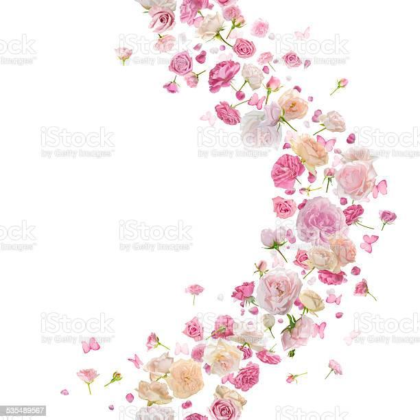 Seamless roses and butterflies breeze curve picture id535489567?b=1&k=6&m=535489567&s=612x612&h=wglmgmn7gqmzxmt1y10 al xtmlokcpb6kexy9xnknm=