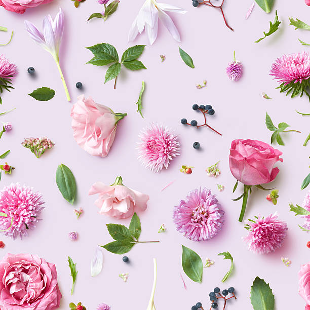 Seamless wallpaper pattern of pink flowers picture id622975514?b=1&k=6&m=622975514&s=612x612&w=0&h=nnh8omik9cmkqjf3139bhyktuwod4kqprrnk7fafdqq=