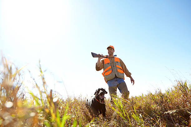 Searching for prey A hunter holding his shotgun while standing outdoors with his hunting dog bird hunting stock pictures, royalty-free photos & images