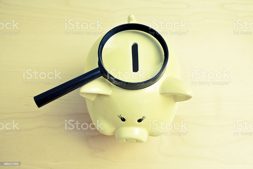 Searching for Savings royalty-free stock photo