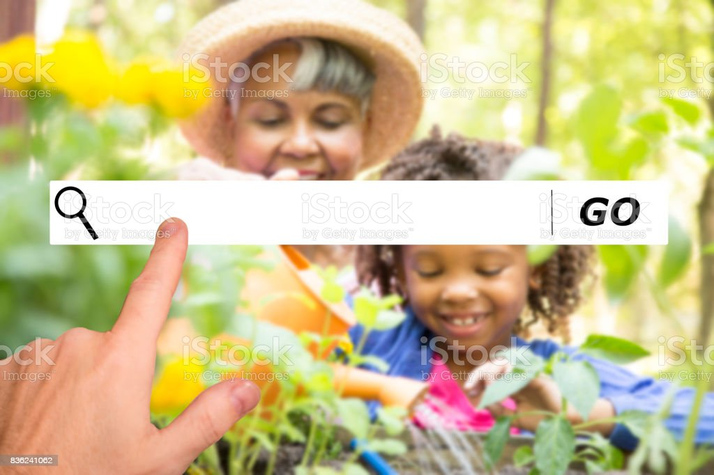 Searching internet websites for gardening ideas. stock photo