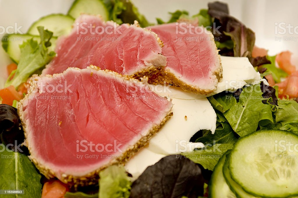 Seared Ahi Tuna Salad royalty-free stock photo