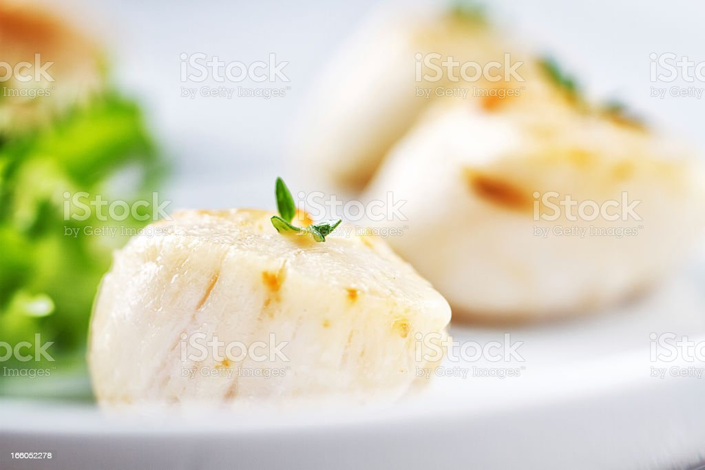 Seared Scallops stock photo