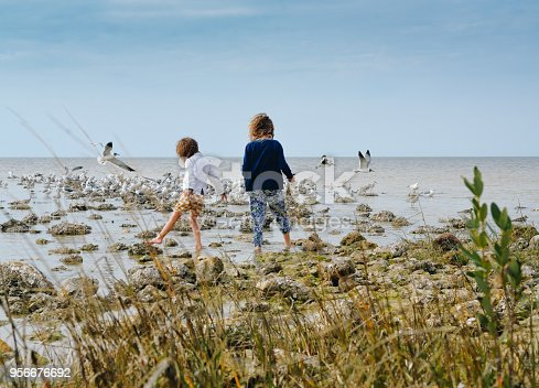 Two girls explore a beautiful seascape, oyster bed, rocky shoreline on a moody looking day at the ocean shore. Seagulls fly in the background, sisterhood and friendship, freedom and adventure in the great outdoors