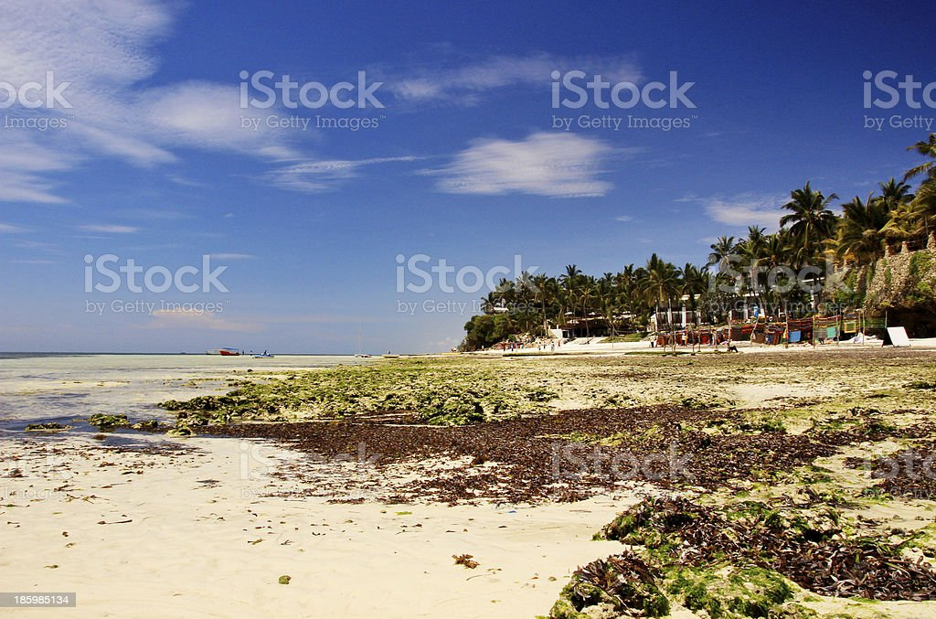 Seascape in Kenya royalty-free stock photo