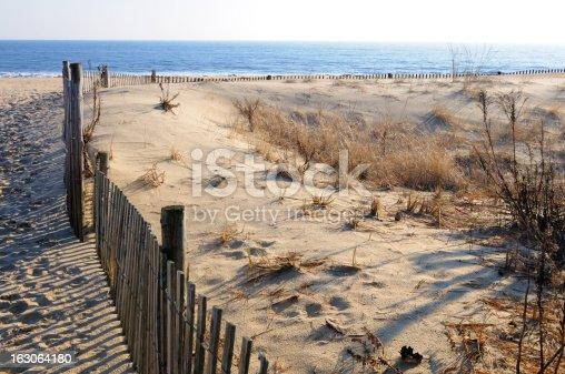 Beach erosion fence along sea shore at Cape Henlopen State Park, Delaware.