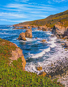 Seascape of Big Sur coastline with breaking waves in a rocky cove, Big Sur California. Sea stacks pop up in the Pacific Ocean, and ice plant covers the slopes.