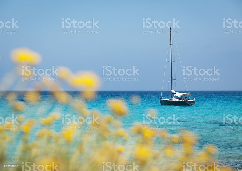 Seascape With Boat And Blurred Yellow Flowers In The Foreground royalty-free stock photo