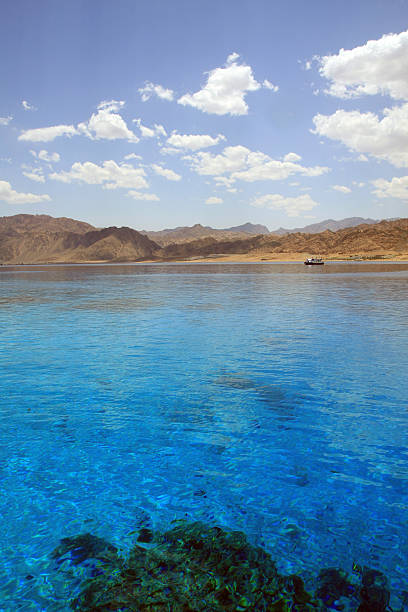 Seascape with coral reef(2). Red Sea. Egypt. stock photo