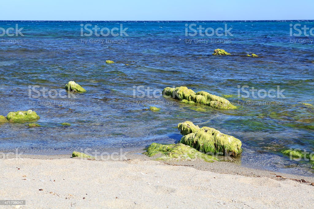 seascape with low tide royalty-free stock photo