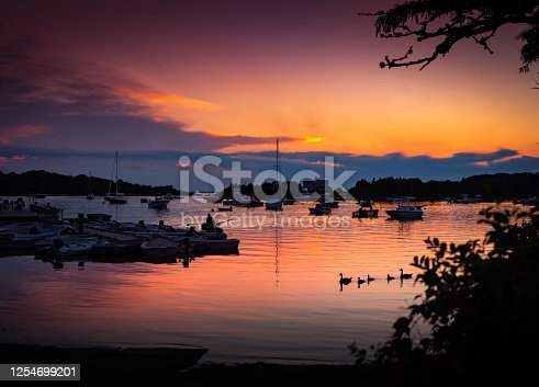 Peaceful landscape over the marina at dusk with wildlife and trees