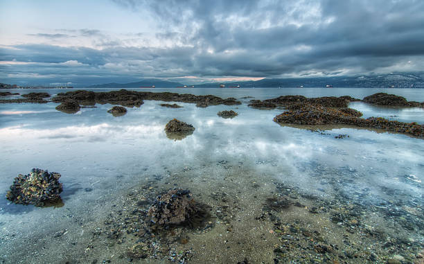 Seascape with Rocks and Cloud Reflection stock photo