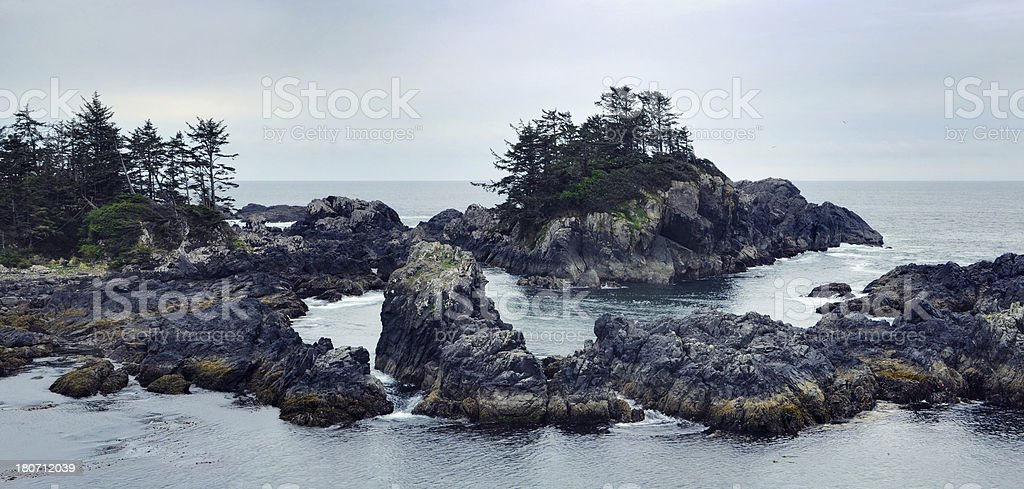 Seascape with trees on rocks at Vancouver Island royalty-free stock photo