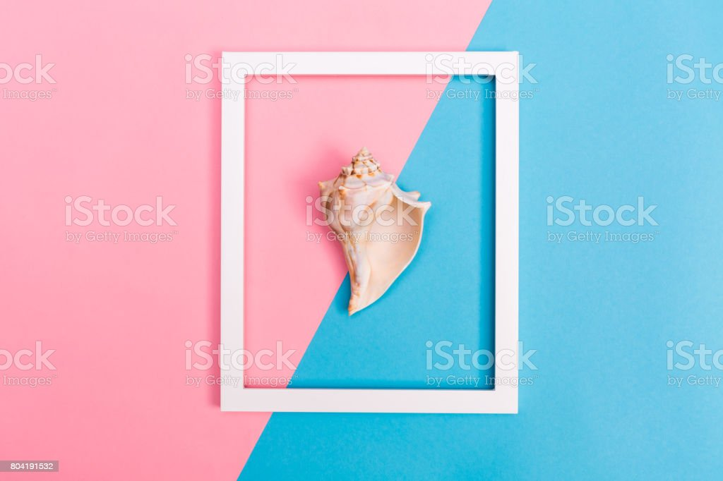 Seashell and frame on a bright background stock photo