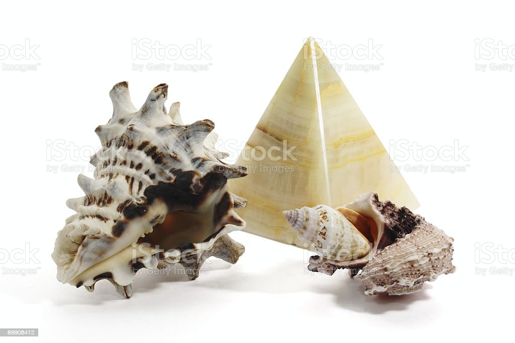 Seashell and onyx pyramid royalty-free stock photo