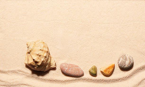 seashell and sea stones on sand. summer beach background - pink and orange seashell background stockfoto's en -beelden