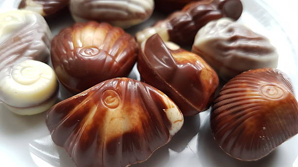 Seashell Shaped Chocolate stock photo