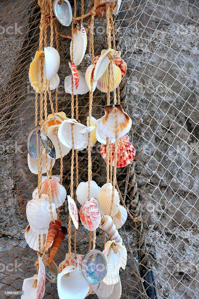 seashells against fishing net royalty-free stock photo