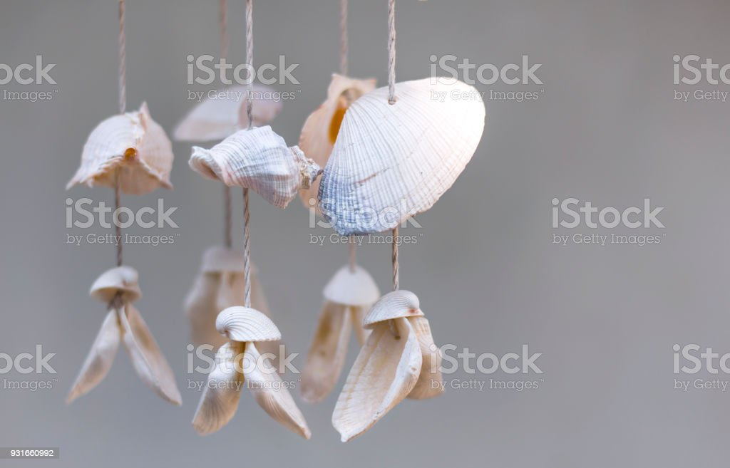 Seashells Hanging On White Background Seashell Mobile Is Handicrafts