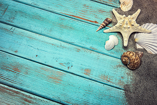 Seashells in the Sand on a blue weathered wood background