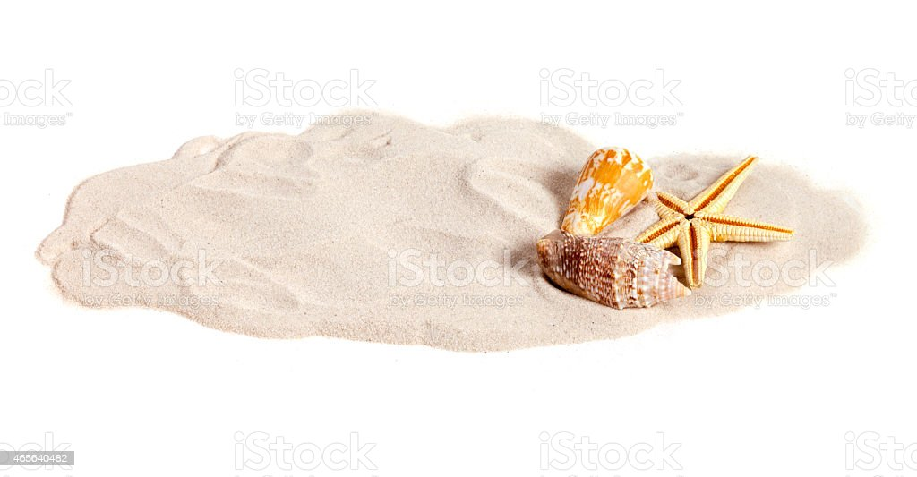 Seashells on decorative strip of sand with copy-space stock photo