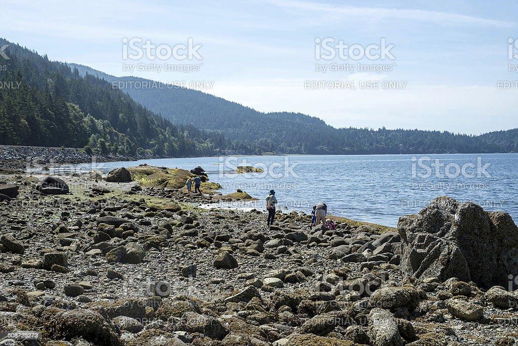 Seashore Fun stock photo