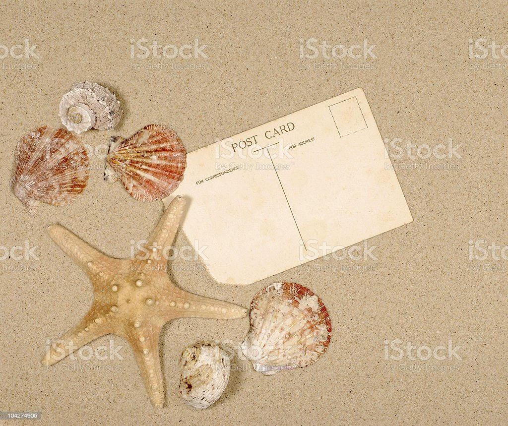 Seashore scene with starfish and postcard royalty-free stock photo