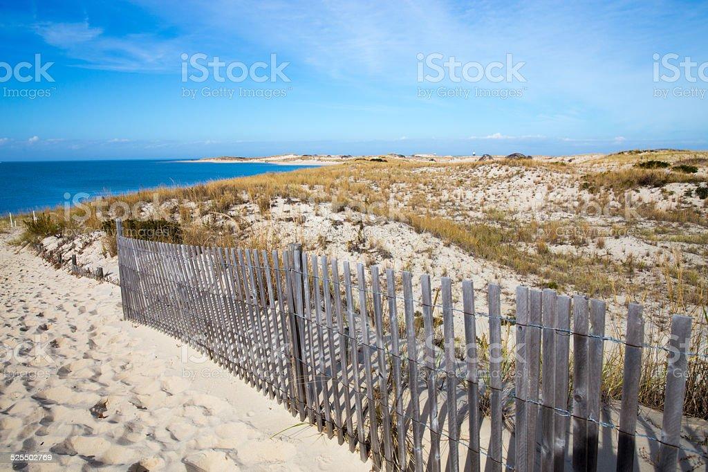 Seashore View in Cape Henlopen, Delaware stock photo