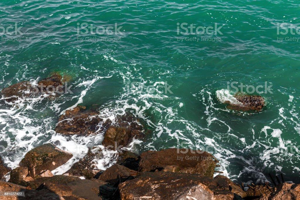Seashore, waves splash stock photo