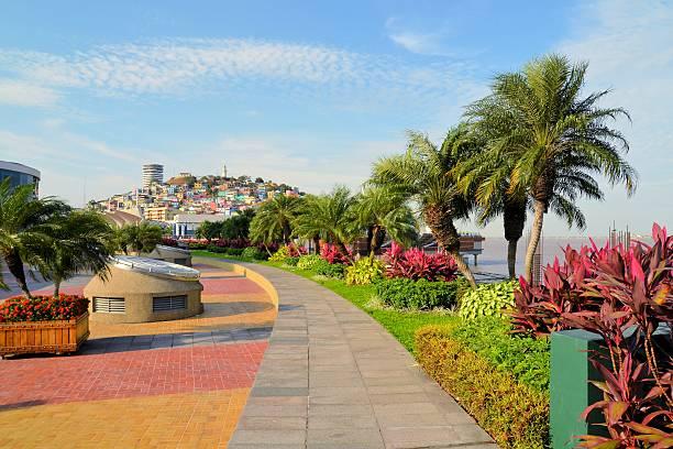 Seaside Malecon 2000 walkway with Santa Ana Hill, Ecuador stock photo