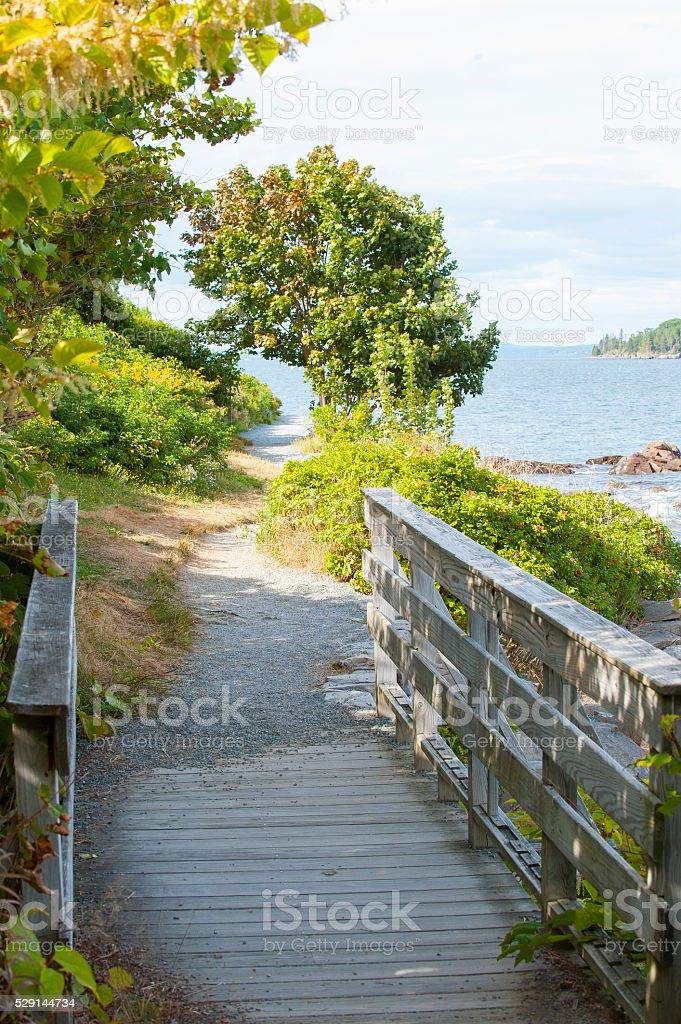 Seaside path stock photo