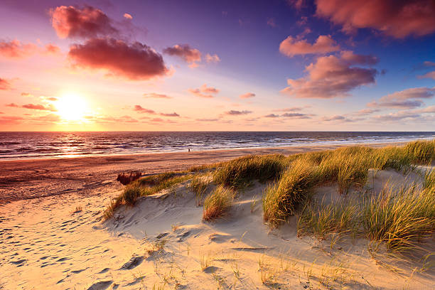 seaside with sand dunes at sunset - sand dune stock photos and pictures