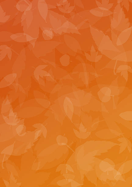 Seasonal 1 picture id90673748?b=1&k=6&m=90673748&s=612x612&w=0&h=bhpcusuqjg5snl uut7rb9mkedmehprihovmw ttmsa=