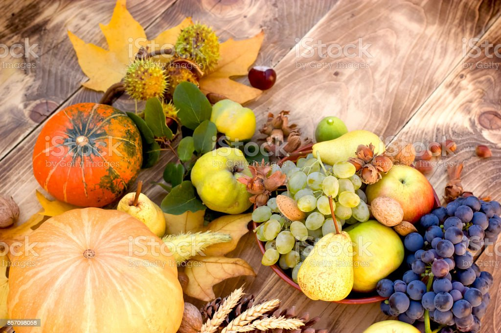 Seasonal Organic Fruit And Vegetable Rich Autumn Harvest Stock Photo Download Image Now Istock