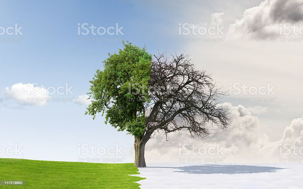 Seasons change stock photo