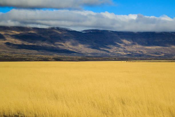 4 jahreszeiten - unendliche gelb trocken feld in patagonien land mit bergen auf der rückseite - afrikanische steppe dürre stock-fotos und bilder