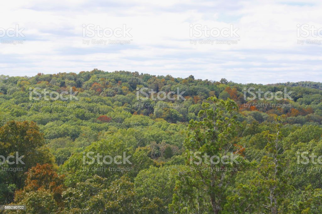 4 Seasons: Shawnee National Forest in Early Autumn stock photo
