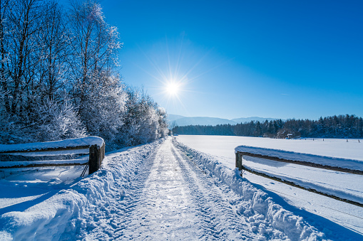 winter wonderland - country road through snow and hoarfrost covered trees in sunny blue sky winterly landscape perfect background for christmas cards