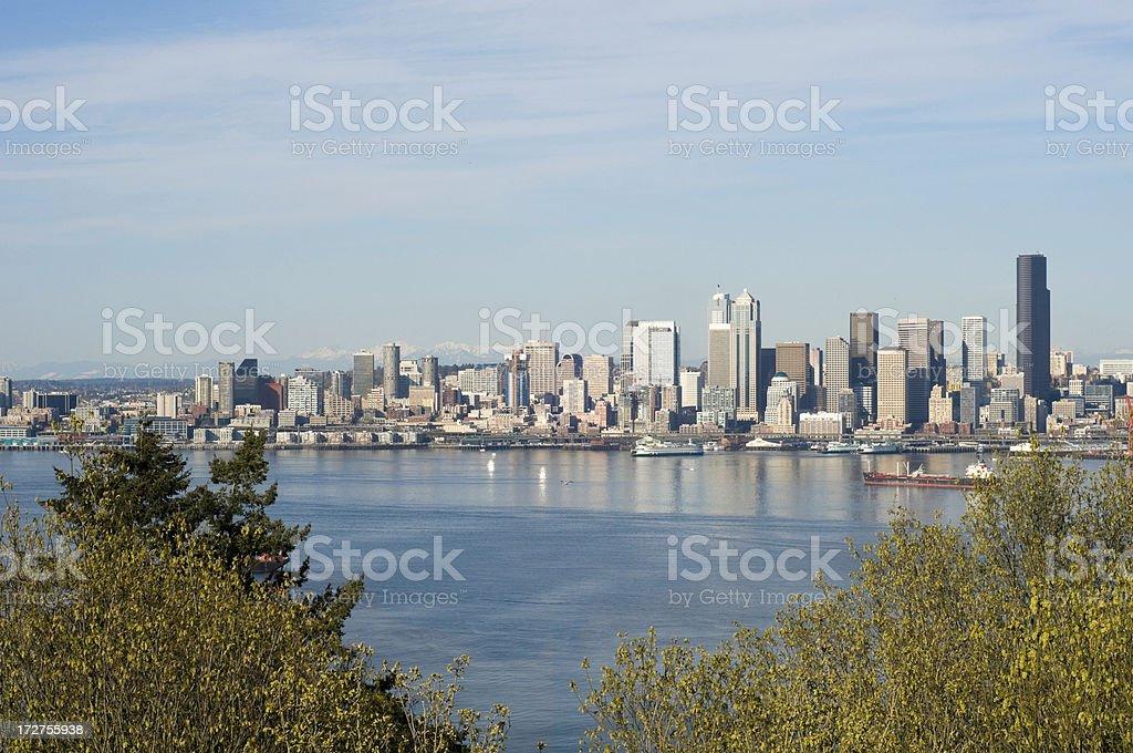 Seattle Skyline Through The Trees stock photo