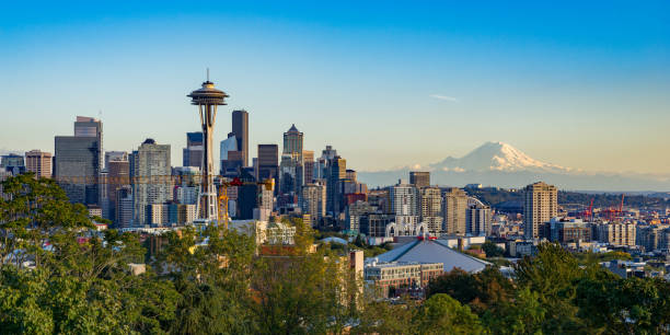 seattle skyline with mt rainier in the background - seattle стоковые фото и изображения