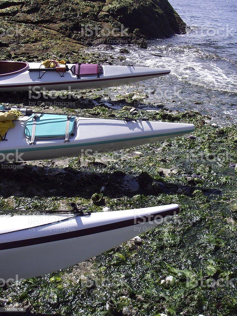 Seaward royalty-free stock photo
