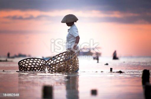 istock Seaweed Farmer 184862548